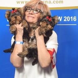 Чемпионат Мира среди собак всех пород