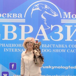 Фоторепортаж с интернациональной выставки – Евразия
