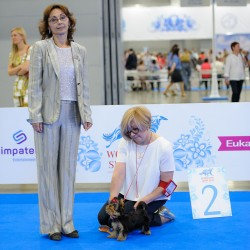 WORLD DOG SHOW